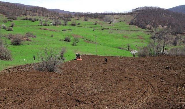 Ordu'da üreticilere 54,5 ton tohum dağıtıldı